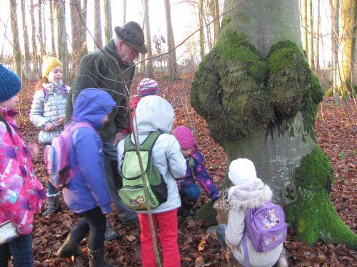 Lerngang Wald